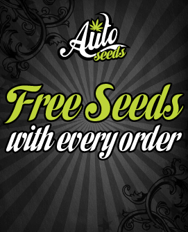 AS-Free-seed