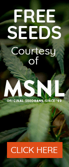 Free Seeds from MSNL