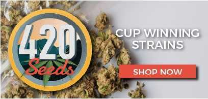 420-seeds-banner