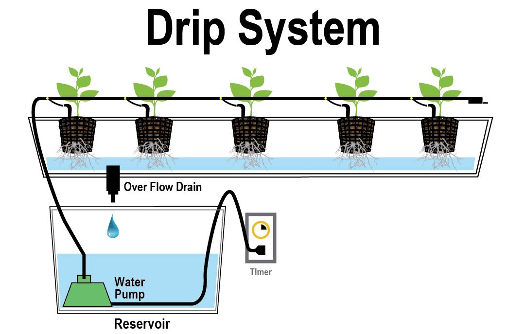 marijuana hydro drip system