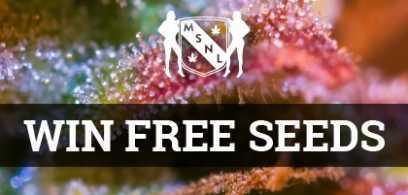 msnl-banner-win-free-seeds