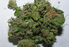 Tsi Fly Marijuana