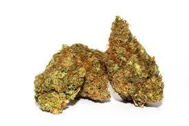 Buddha marijuana seeds