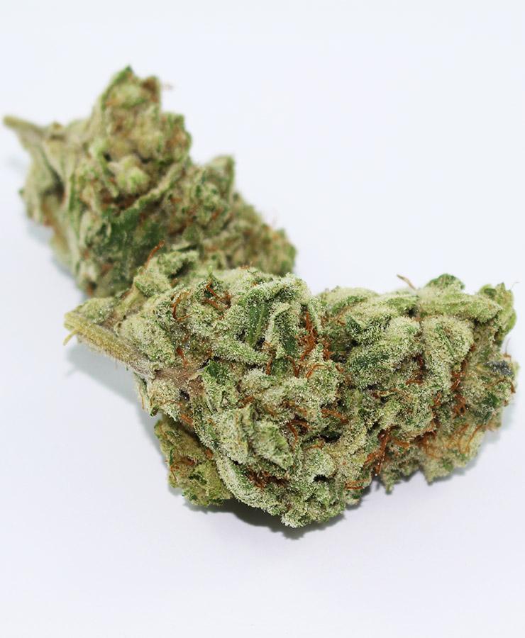 Skywalker OG marijuana seeds