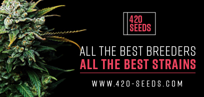 420 seeds store